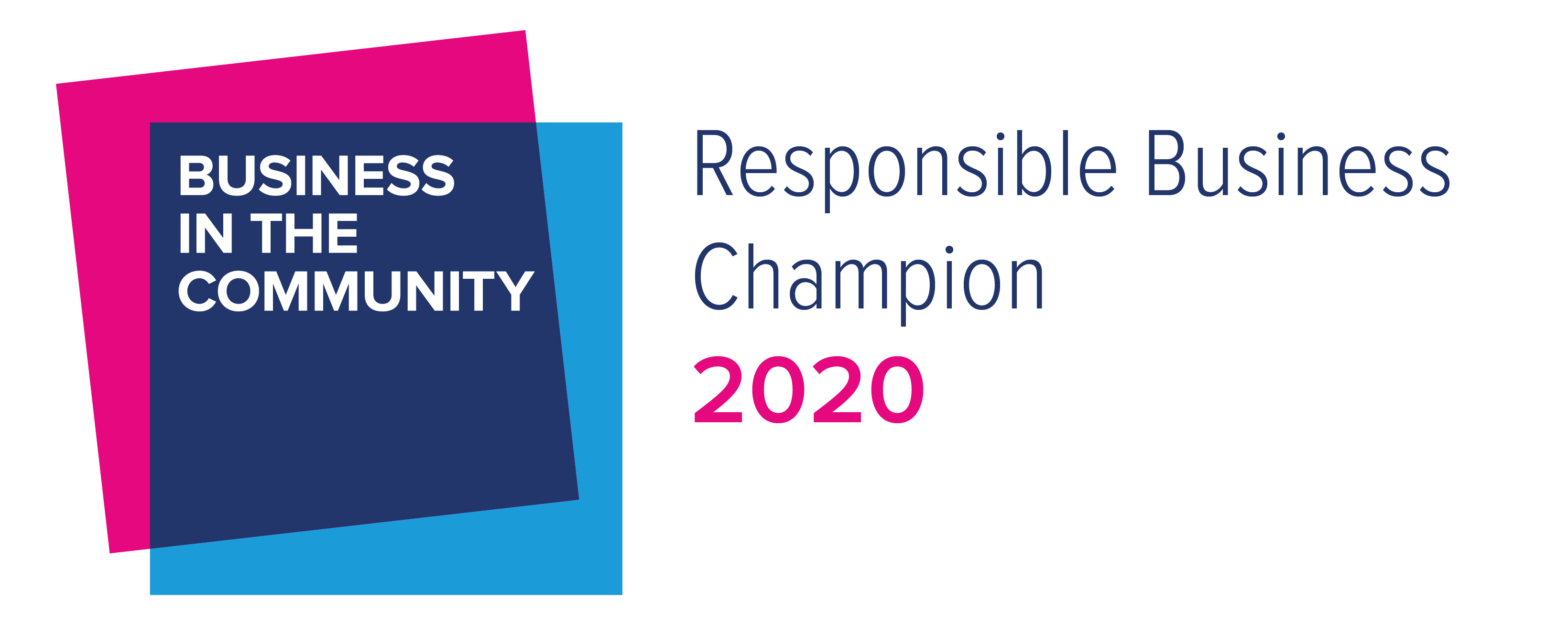 Responsible Business Champion 2020 image
